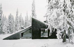 Дом в заснеженном лесу
